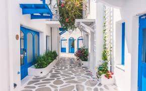 Картинка улица, дома, клумбы, белые дома, синие двери