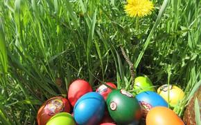 Картинка трава, яйца, пасха, весна 2018, meduzanol ©