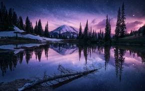 Картинка лес, небо, звезды, горы, ночь, озеро, гора