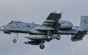 Картинка авиация, боевой самолёт, крылатая машина, A-10C Thunderbolt II