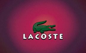 Обои крокодил, хайповый шмот, одежда, мода, Lacoste, шмот, стиль