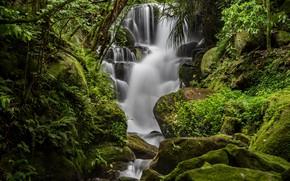 Картинка вода, зеленый, камни, водопад, мох