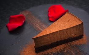 Обои сладкое, еда, шоколад, пирожное, крем, лепестки