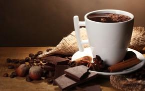 Картинка шоколад, чашка, фундук, специи