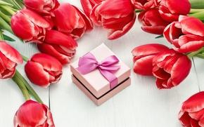 Обои love, colorful, красные тюльпаны, gift, romantic, 8 марта, тюльпаны, tulips, red, цветы