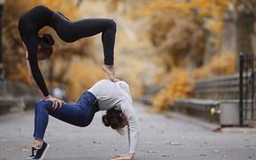 Картинка поза, девушки, йога, изгиб