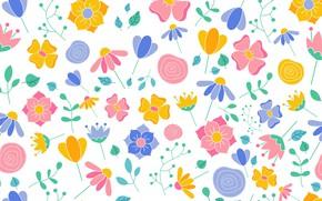 Картинка цветы, текстура, background, petals, floral