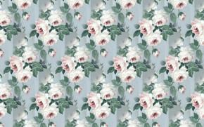 Картинка ретро, обои, розы, серый фон, vintage, flower, винтаж, roses
