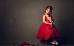 Картинка цветы, фон, настроение, роза, лепестки, девочка, красное платье