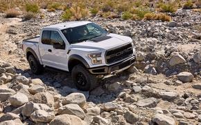 Картинка Ford, Белый, Камни, Автомобиль, Raptor, F-150, 2017