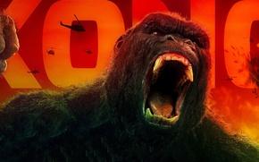 Обои King Kong, cinema, movie, gorilla, film, strong, Kong, Kong: Skull Island, Skull Island