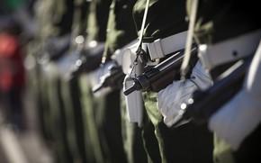 Картинка армия, строй, Brazilian Air Force, cerimonia militar