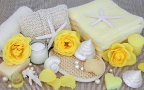 Картинка цветы, flowers, salt, candle, seashells, ракушки, мыло, spa, bath, still life