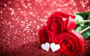 Картинка любовь, цветы, праздник, розы, сердечки, день влюбленных