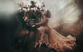 Обои лес, девушка, свет, деревья, цветы, стиль, человек, платье, дымка, пианино, пионы, балетки