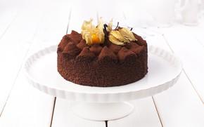 Картинка торт, физалис, какао