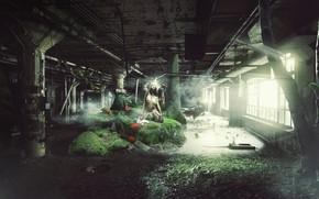 Картинка девушка, зайцы, Rabbit, BossLogic, Chasing, The White