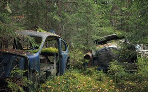 Обои лом, лес, машины