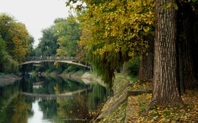 Картинка Мост, Осень, Парк, Fall, Листва, Bridge, Park, Autumn, Colors, Romania, Листопад, Румыния, Bega river, Река …