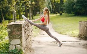 Картинка девушка, природа, спорт, утро, зарядка, пробежка