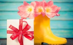 Картинка цветы, тюльпаны, love, 8 марта, pink, romantic, tulips, gift, розовые тюльпаны