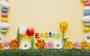 Картинка Цветы, Весна, Тюльпаны, Пасха, Яйца, Травка, Праздник