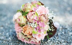 Картинка цветы, розы, гортензия, Букет