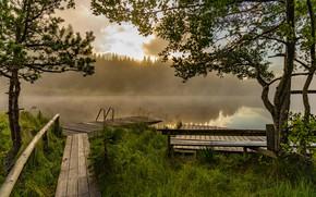 Обои причал, озеро, утро, туман