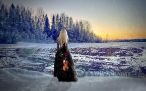 Обои роза, платье, скрипка, Winter Solstice, снег, девушка