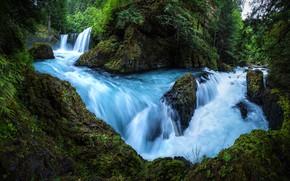 Картинка лес, лето, вода, скалы, растительность, водопад, поток