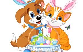Картинка животные, фон, яйца, пасха