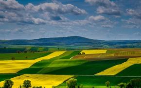 Обои поля, Рейнланд-Пфальц, Германия, холмы