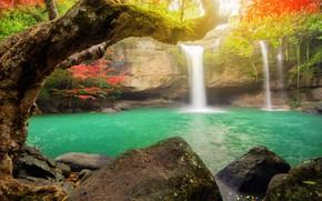 Картинка осень, лес, природа, водопад, поток