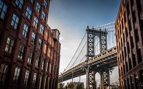 Обои Manhattan Bridge, buildings, New York, Bridge