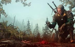 Картинка лес, оружие, останки, воин, The Witcher, Geralt of Rivia