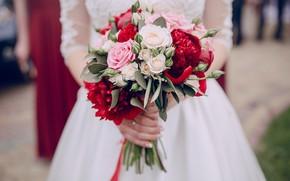 Картинка розы, букет, платье, невеста, свадьба, пионы