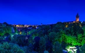 Картинка деревья, ночь, мост, огни, замок, дома, панорама, Люксембург