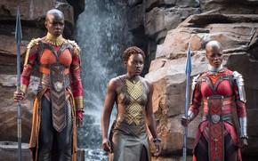 Картинка cinema, weapon, woman, movie, film, warrior, spear, Black Panther