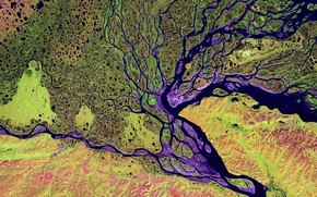 Картинка река, дельта, Лена, Сибирь