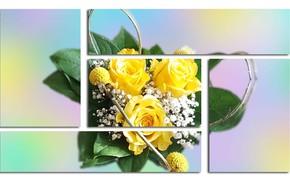 Картинка Grafika, Kwiaty, Rozciecia
