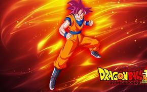 Картинка alien, anime, man, martial artist, manga, Son Goku, kimono, Dragon Ball, Goku, kanji, Dragon Ball …