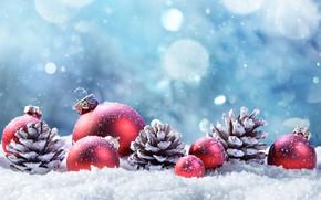 Обои Xmas, Новый Год, snow, зима, Merry Christmas, New Year, Christmas, decoration, снег, украшения, шишки, happy, ...