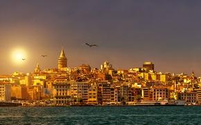 Картинка небо, солнце, пролив, рассвет, побережье, корабль, чайки, дома, Стамбул, Турция