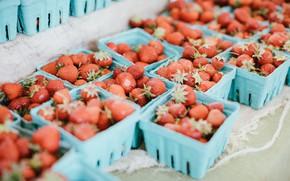 Картинка клубника, ягода, красная, много