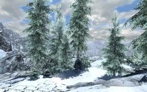 Картинка снег, ели, snow, skyrim, скайрим, tes 5, fir trees, высокий хротгар, high hrothgar