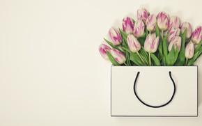 Картинка цветы, букет, Сумочка, тюльпаны