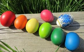 Картинка яйца, пасха, брус, mamala ©
