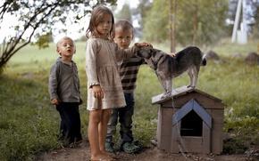 Обои дети, настроение, собака