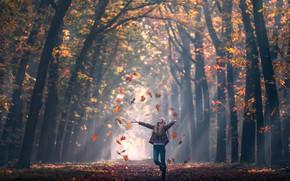 Картинка осень, листья, девушка, Fall, аллея