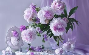 Картинка розовый, зеркало, пионы, зефир